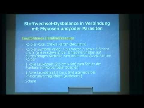 Alexander Hilms: Mykosen- und Parasitenbehandlung über Chakren und Alarmpunkte
