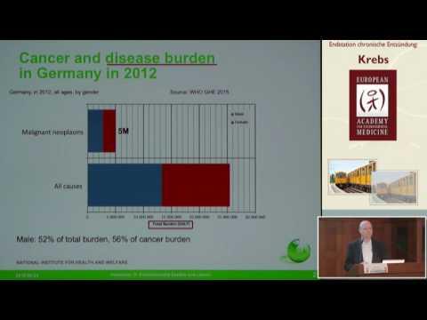 1/2: Prof. Dr. Otto Hänninen: Umweltbelastungen und Krankheiten - 9 Umweltrisikofaktoren