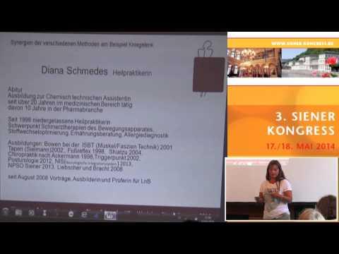 1/6: Diana Schmedes: Synergien bewährter Schmerztherapien ... Posturologie, NPSO, etc.