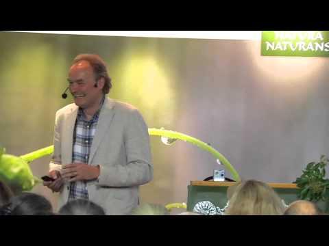 1/5: Olaf Rippe: Der Hals - Praxistipps zur Energiearbeit und Reflexzonentherapie