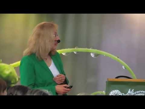 1/4: Dr. med. Kerstin Späthe: Die Bedeutung der Schilddrüse in der Frauenheilkunde