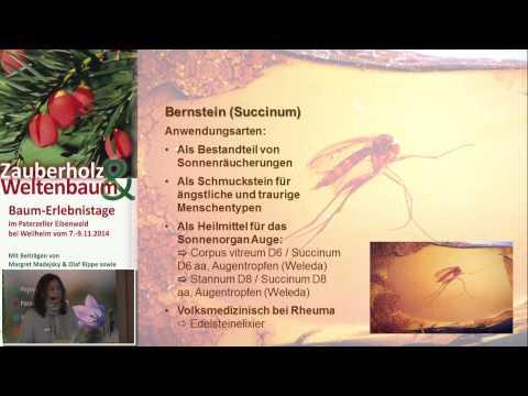 1/2: Margret Madejsky: Die Sonnenkräfte der Harze
