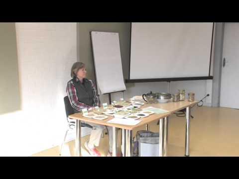 1/4: Elisabeth Westphal: Der Gemüsegarten am Fensterbrett