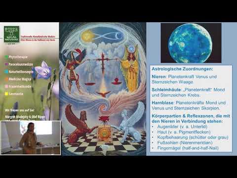 1/2: Margret Madejsky: Was uns an die Nieren geht – Naturheilkonzepte für Blase und Nieren
