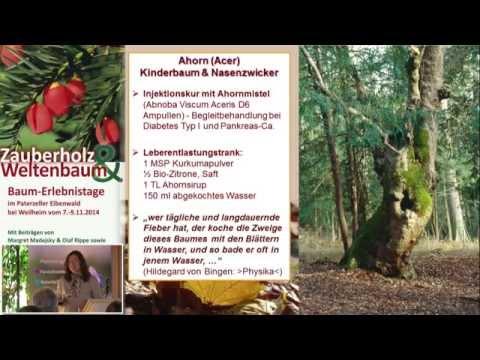 1/2: Margret Madejsky: Die kleine Baumapotheke