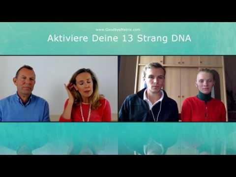 1/2: Monika Gössl, Thomas Meyer: Aktiviere Deine 13-Strang-DNA