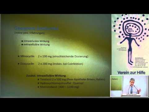 1/ 2 Prof. Dr. Wolfgang Huber: Behandl. der sekun. Mitoch.-pathie bei chronisch-system. Entzündungen