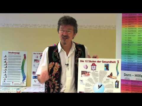 Joachim Wohlfeil: 12 Säulen der Gesundheit 1 DVD-Wissen - Experten Know How