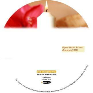 WGMM16 V07 OpenHealerForum Sonntag 324x324 - Open Healer Forum (Sonntag)
