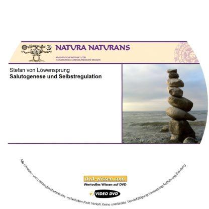Stefan von Löwensprung: Salutogenese und Selbstregulation 1 DVD-Wissen - Experten Know How