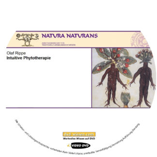 NNM17 V05 Olaf Rippe Intutive Phytotherapie mit Pflanzen sprechen 324x324 - Olaf Rippe: Intuitive Phytotherapie