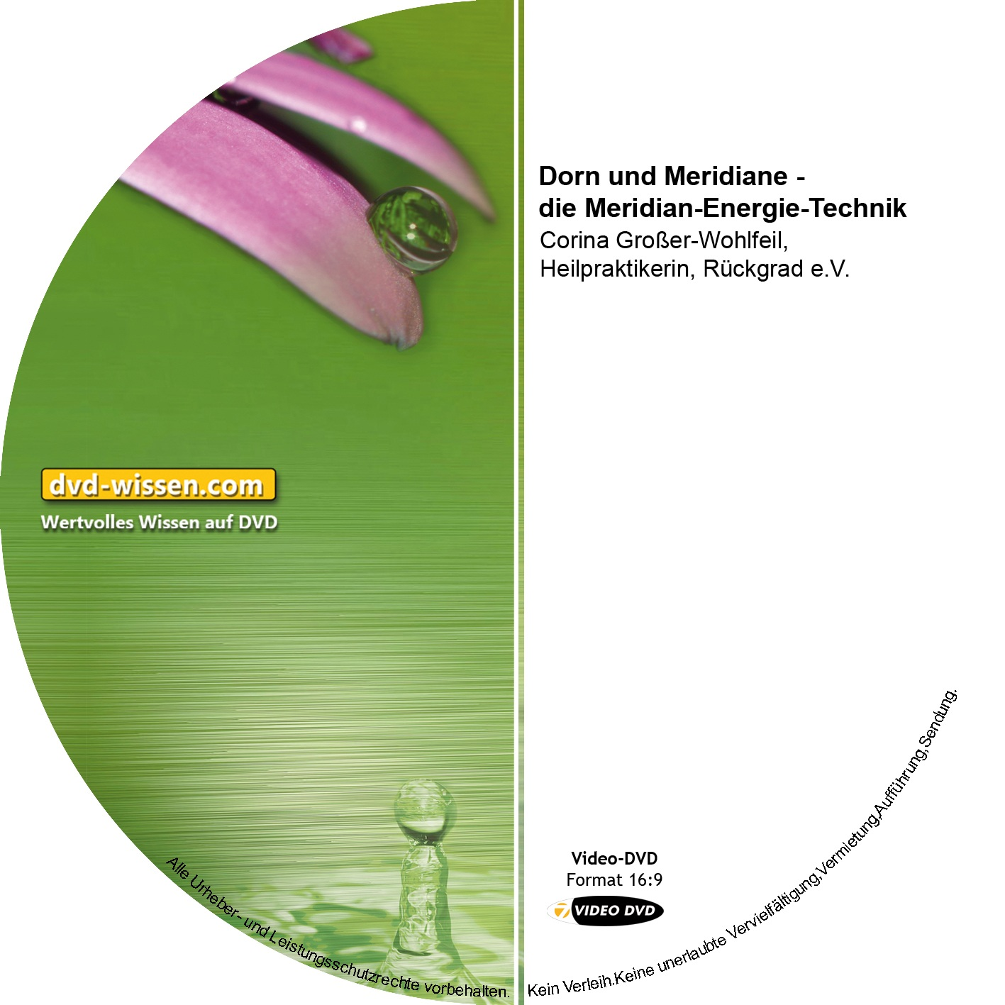 Corina Großer-Wohlfeil: Dorn und Meridiane - die Meridian-Energie-Technik