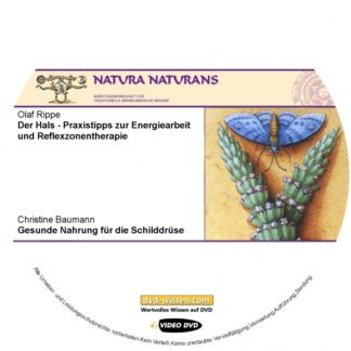 dvd-label-vorlage_2601_0.jpg