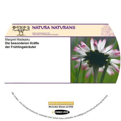 NNM17_V04-Madejsky-Frühlingskräuter.jpg