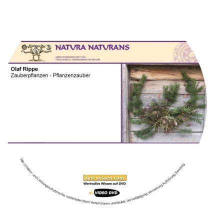 NNM15_V02-Olaf-Rippe-Zauberpflanzen-Pflanzenzauber.jpg